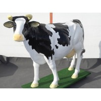 Kuh Wettmelken kaufen